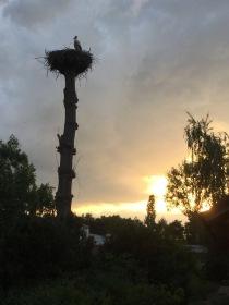 Abenddämmerung am Hof