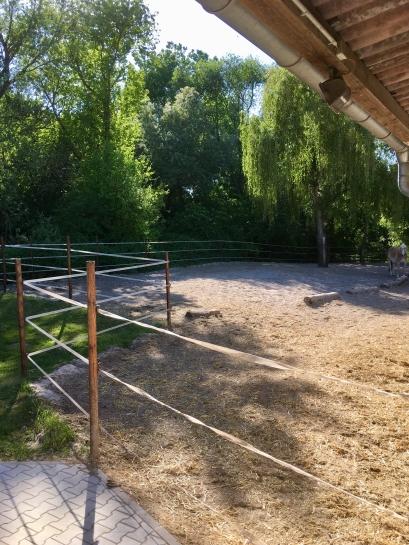 Laufstall im Sommer
